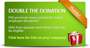 double-the-donation-detailed-green