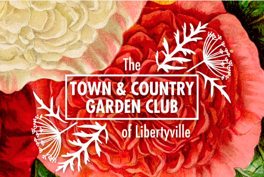 TownandCountryGardenClubLogoOnly